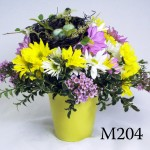 M204 - $40 - 'Nest of Daisies'